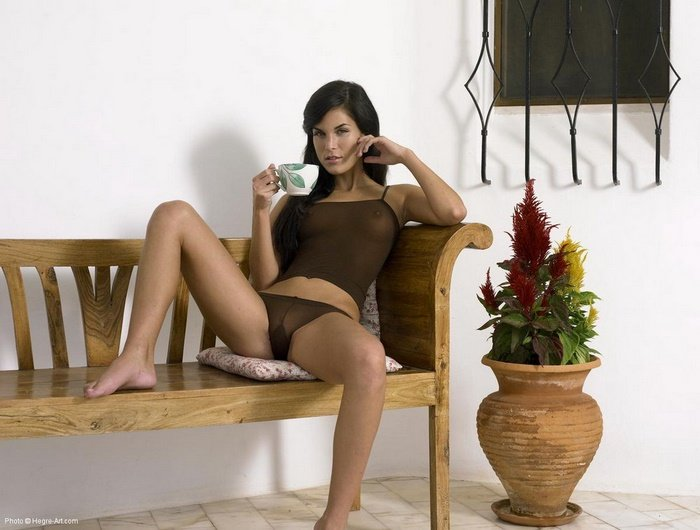 Эротические фотографии чаепития сексуальной брюнетки