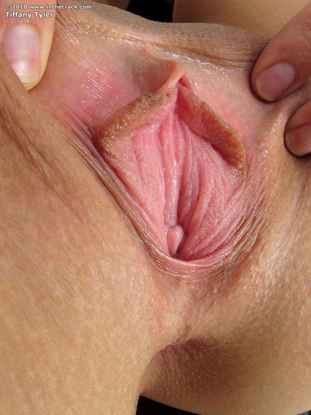 Эротическая галерея сексуальной брюнетки в кожаном кресле