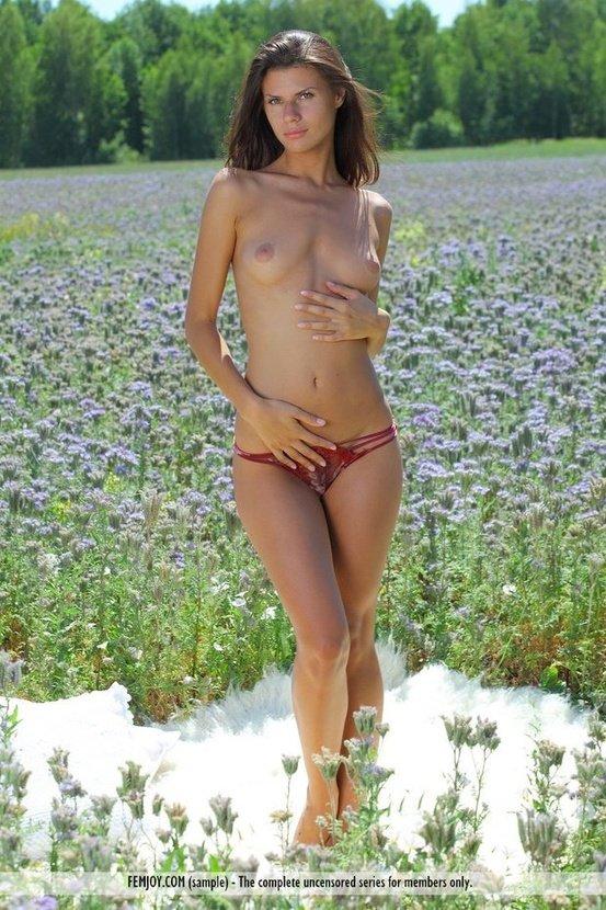 Эротическая галерея красивой девушки на цветочном поле